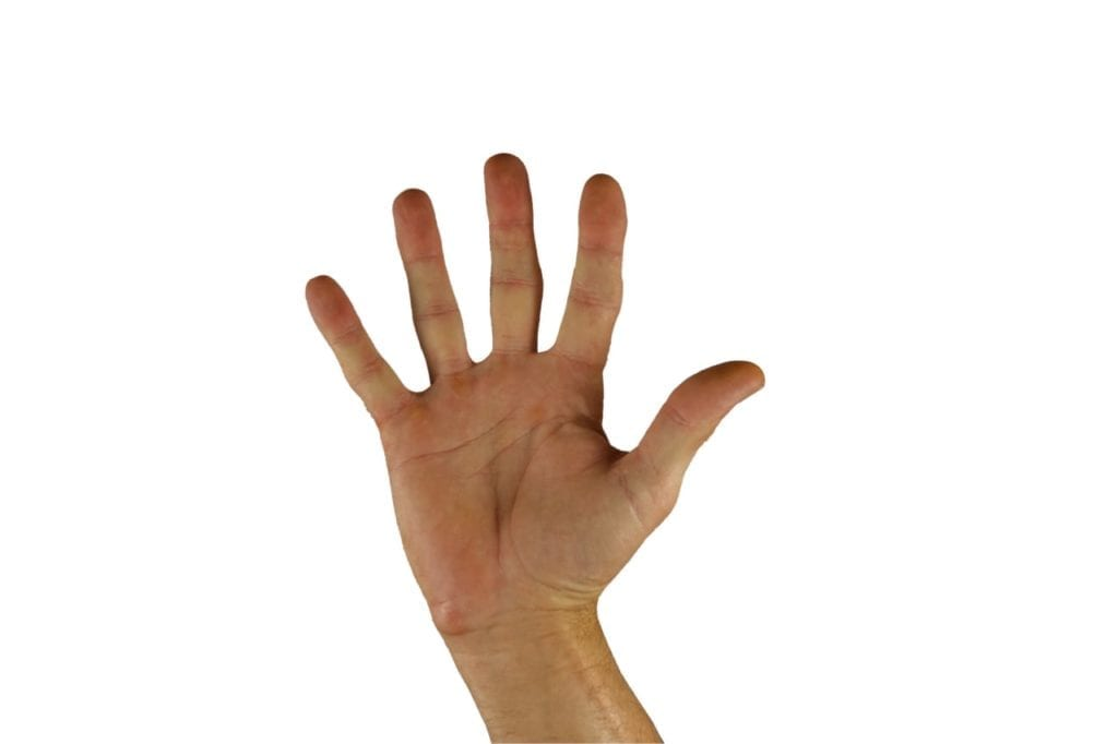 A palm facing hand